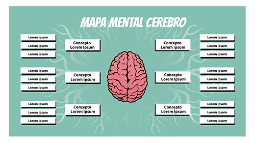 mapa mental cerebro